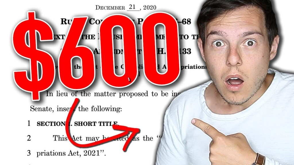 THE NEW $600 STIMULUS CHECK | What You MUST Know