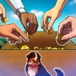 Grumpy Cat meme coin raises $70K for animal shelters